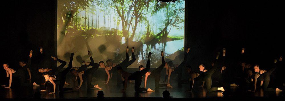 Tanzzentrum Hiltrup